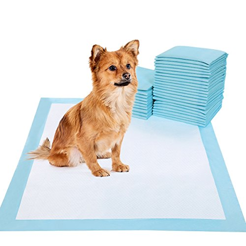 Are Dog Training Pad Safe for Babies