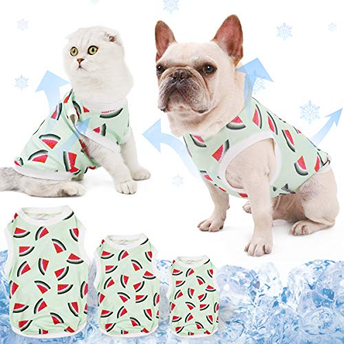 DogLemi Fast-Dry Instant Cooling Pet Shirts Cute Watermelon Puppy Dog Cat T-Shirt Tank Top Summer Clothes Cooling Ice Vest for Dogs (M(Chest: 20''-26'))