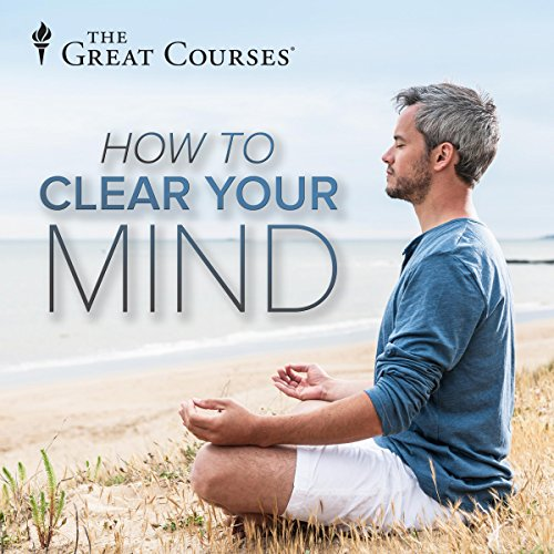 Insight: Clearing the Mind audiobook cover art
