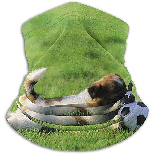 WARmin Puppy and Football Nackenschutz Gesichtsmaske Bandana Nahtloses Stirnband Für Männer Frauen