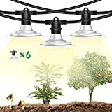 Espird Plant Grow String Light Waterproof for Outdoor Greenhouse,Growing Heat Lamps Full Spectrum for Indoor Outdoor Succulent Plants,String Sunlight Led Lamps for Large Area Farm (6 Light)