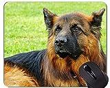 Mauspads - Schäferhund-Hundebrille-Militärfunktion, Hundemausunterlage mit genähten Rändern