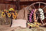 YongFoto 2,2x1,5m Polyester Foto Hintergrund Innen ländlicher Bauernhof Heu Heap Board Ecke Sonnenblumen Rad Knoblauch Fotografie Hintergrund für Photo Booth Party Fotostudio Requisiten