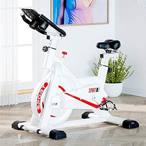 YOVYO Exercise Bike Stationary Indoor Cycling Bicycle Echelon Smart Connect Fitness Spin Bikes, Adjustable Handlebars And Seat, 11kg Flywheel, Infinite Resistance, Smartphone App