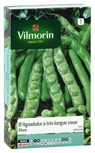 Vilmorin 1301651 Pack de Graines Fève d'Aguadulce à Très Longue Cosse