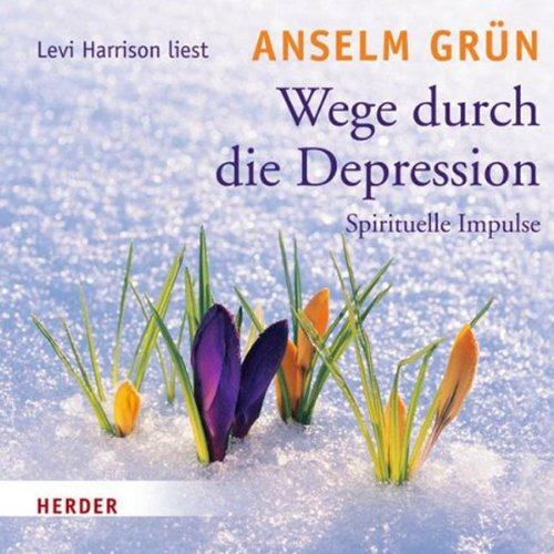 Wege durch die Depression audiobook cover art