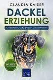 Dackel Erziehung: Hundeerziehung für Deinen Dackel Welpen (Teckel)