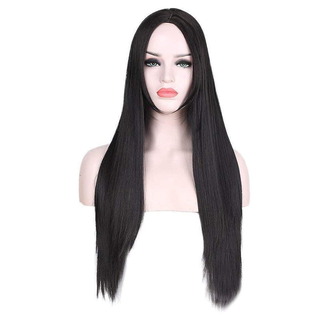 学習燃やす後悔WASAIO スタイル交換用ウィッグブラックロングストレートヘアアクセサリーミドルパート女性耐熱繊維 (色 : 黒)