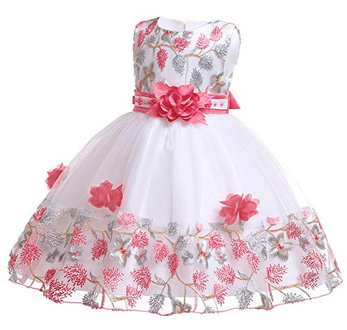 Easter Dresses Baby Girls Toddler Pageant Vintage Embroidery Floral Toddler Dress 3M 6 Months (Watermelon,6M)