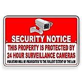 CDYSKJCO Señal de advertencia de metal Señal de seguridad Esta propiedad está protegida por cámaras de videovigilancia 24 horas Violators Will Be Prosecuted for Garage Motel S07 Metal Sign