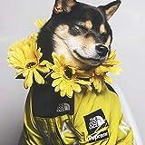 'The Dog Face' moda vestiti per cani giacca in poliestere per animali domestici abiti carino decorazioni per cani cappotti vestiti per festa di compleanno costume (giallo-2XL)