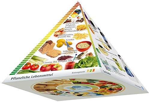 Dreidimensionale DGE-Lebensmittelpyramide: Multiplikatorenpaket