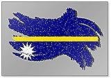 Nauru Grunge Flagge, Nauru Flagge mit Schatten Illustration Kühlschrankmagnet