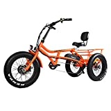 electric adult tricycle - Addmotor Motan M-360 Three Wheel Electric Bike, 20 Inches 750W 48V 16Ah Removable Battery 7 Speeds Tricycle, 450lbs Carry with Rear Bike Bag, 55-65 Miles with PAS 1 (Orange)