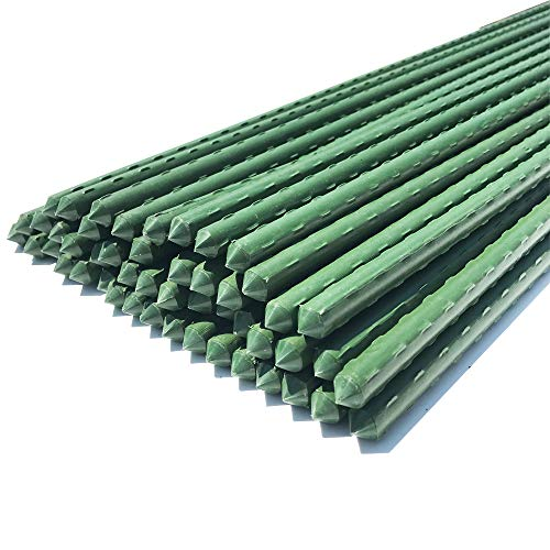 WAENLIR Garden Stakes 60 inch 5ft Sturdy Plant Sticks/Support, Tomato Stakes, Pack of 50