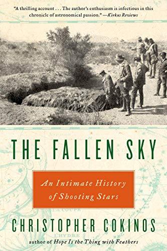 The Fallen Sky (English Edition)