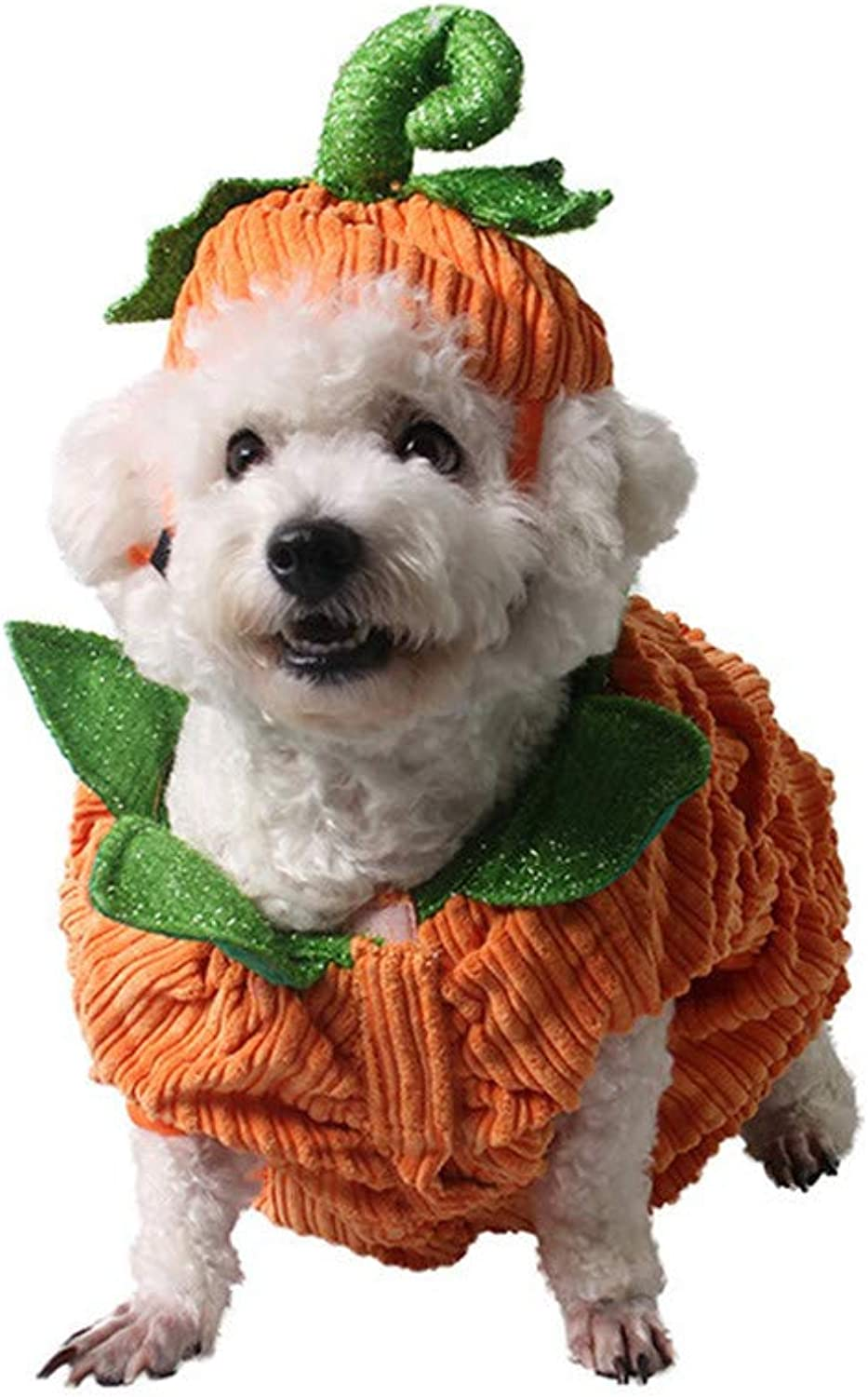 Pet Pumpkin Costume for Cats & Small Dogs Party Halloween Cosplay Free Size orange