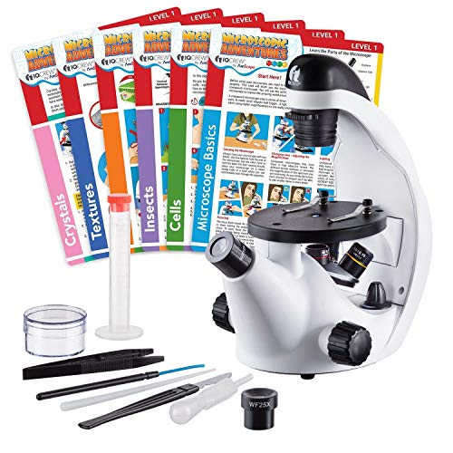 IQCrew by AmScope 40X-500X Kids Inverted Student Microscope with 6 Experiment Cards and Slide Prep Kit - Science Discovery Series