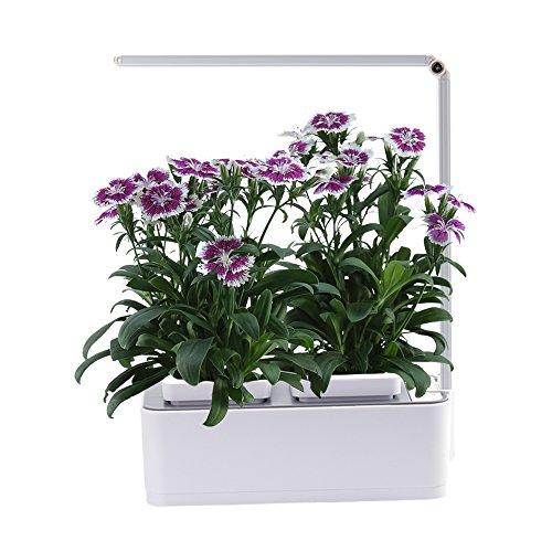 Indoor Herb Garden, AIBSI Hydroponics Watering Growing System, Organic...