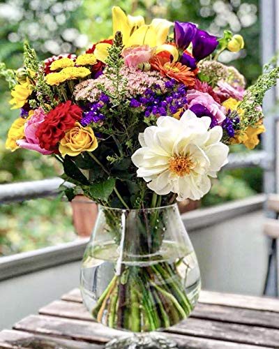 Maison Zoe Mundgeblasene und Handgefertigte Glasvase Napoleon - 23cm hoch - Blumenvase - Deko & Hochzeit
