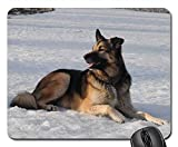 Gaming Mouse Pads,Mouse mat,Snow Winter Nature Cold Outdoors Animal Cute Dog
