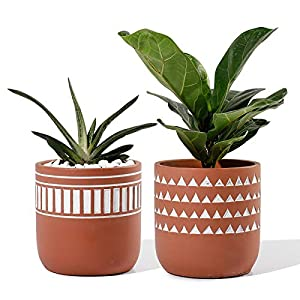 POTEY Indoor Plant Pots Cement – 4.13 Inch Medium Planter Flower Containers Clay Modern Decorative with Drain Hole – Set of 2 Terracotta, Unglazed 211921