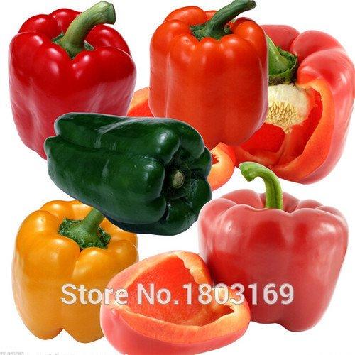 Graines de légumes Habanero Orange Piment Graines de plantes – 100 pcs – Très Hot.