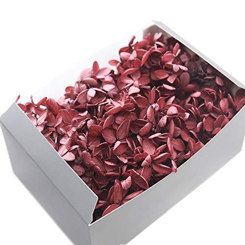 JWShang Hortensias conservadas, flores conservadas, exquisitas flores inmortales de lujo, decoración del hogar, bricolaje, regalo para el día de la madre, cumpleaños, regalo de San Valentín