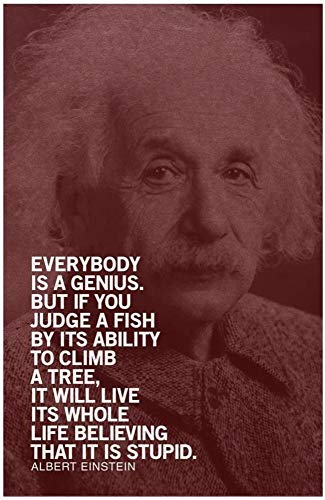 Gray Granite Framed Canvas Wall Art Quotes for Office, Home Decor (8'x12') Albert Einstein Everybody is A Geniuses Motivational Inspirational Quote Maroon