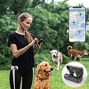 Pet GPS Tracker for 1-3 Dogs,No Monthly Fee,Real-Time Tracking Device,Activity Monitor(Only for Dog ,3 Dogs Track at Most)