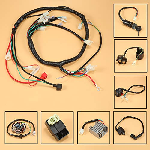 JRL Wiring Harness Wire Loom Stator Electrics For GY6 150CC 125CC BUGGY...