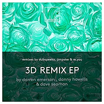 3D Remixes