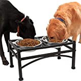 Funkeen Elevated Dog Bowls Raised Pet Feeder Food Water Diner Stand Set with 2 Removable Stainless Steel Bowls (Fit for Large Dogs / 2 Quarts)