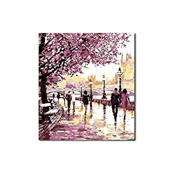 FajerminArt Malen nach Zahlen Kits DIY Leinwand Ölgemälde Kit für Kinder Erwachsene Kinder Anfänger mit Pinseln und Acrylpigment 40 * 50cm ohne Rahmen-Sakura Road