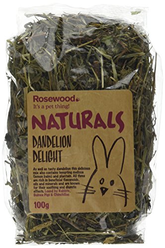 Rosewood Pet 1 Pouch Dandelion Delight Food For Small Animals, 100G