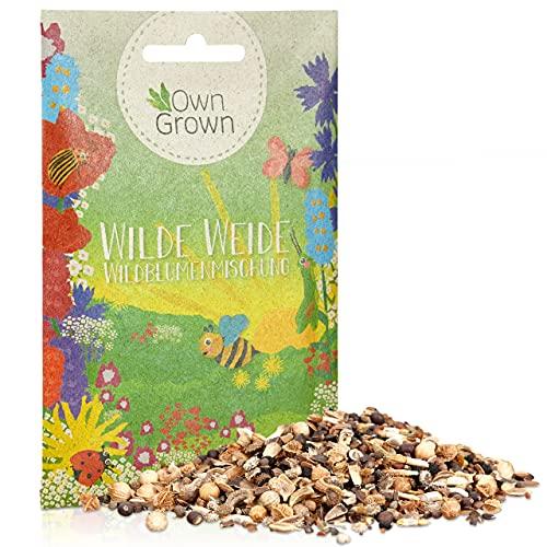 Wilde Weide: 10g Premium Wildblumensamen Mischung mehrjährig und einjährig - Insektenfreundliche Blumenwiese Samen für Bienen - Blumensamen für eine bunte Bienenwiese - Wildblumen Samen von OwnGrown
