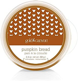 Gold Canyon Candle Pumpkin Bread Scent Pod