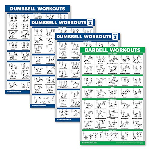 Palace Learning 4 Stück – Hantel-Workout-Poster Volumen 1, 2 und 3 + Langhantel-Übungstabelle – Set mit 4 Postern (laminiert, 45,7 x 61 cm)