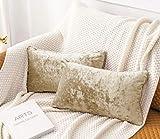 HORIMOTE HOME - Juego de 2 fundas de cojín rectangulares de terciopelo aplastado, color marrón claro, color caqui