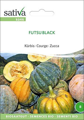Kürbis Futsu Black | Bio-Kürbissamen [MHD 12/2018]