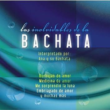 Los Inolvidables De La Bachata