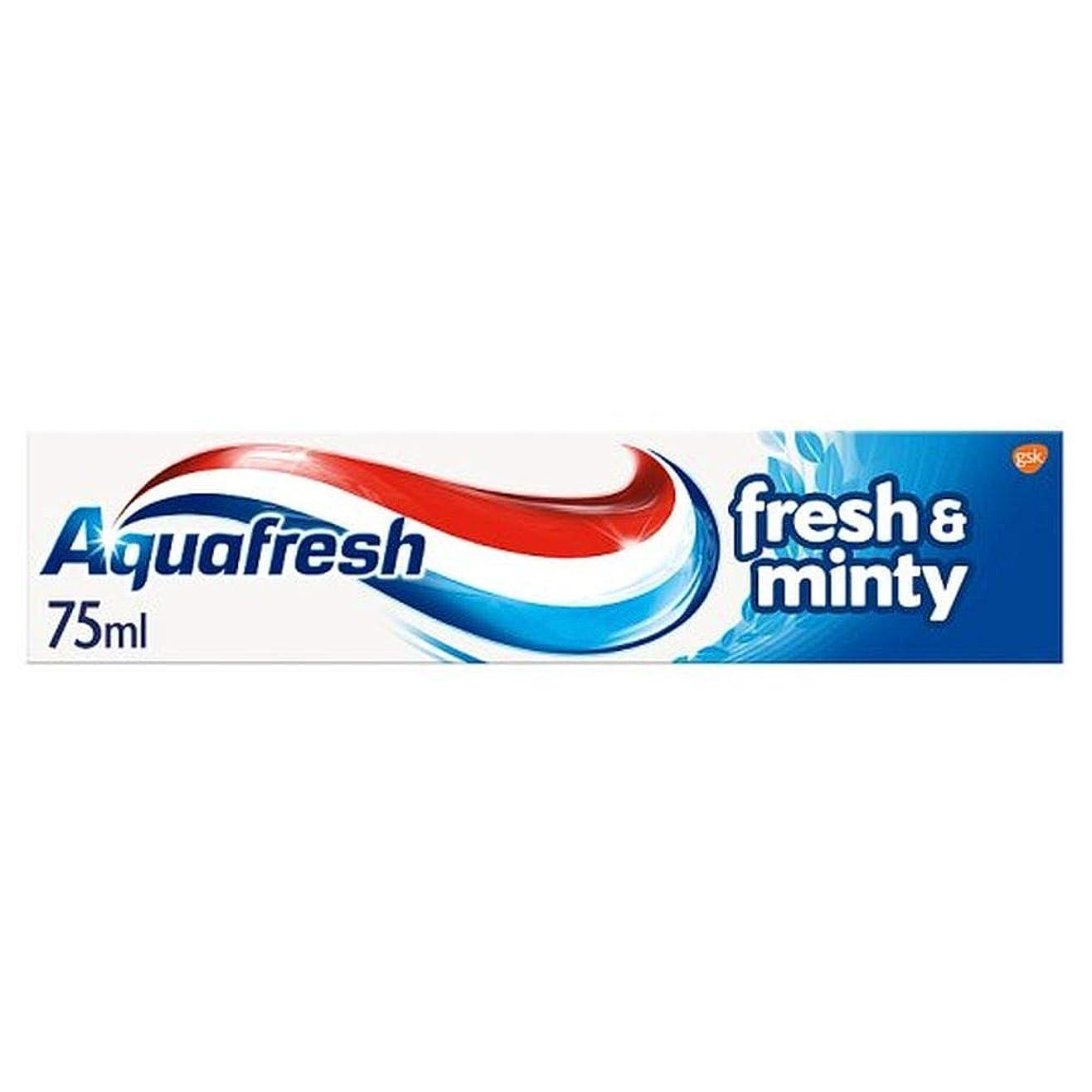 ディスク早熟縞模様の[Aquafresh ] アクアフレッシュFreshmint歯磨き粉75ミリリットル - Aquafresh Freshmint Toothpaste 75Ml [並行輸入品]