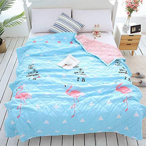 Fansu Tagesdecke Bettüberwurf Steppdecke Mikrofaser Doppelbett Einselbetten Gesteppt Bettwäsche Sofaüberwurf Wohndecke Bettdecke Stepp Gesteppter Quilt (Flamingo,140x200cm)