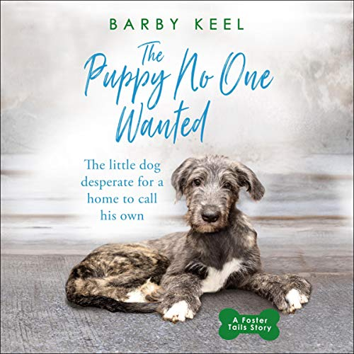 The Puppy No One Wanted cover art