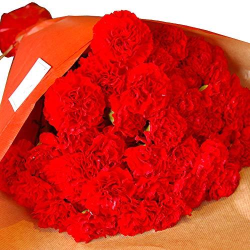 母の日 パラボッセ 花 カーネーション 50本 bouquet red carnation