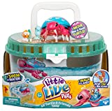 Little Live Pets - Turtle Tank - Sandy The Tropical Turtle