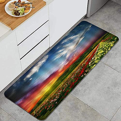 VAMIX Tappeto da Cucina,Paesaggio floreale alba campi di fiori collina prato fantasia cielo alba natura paesaggio,antiscivolo passatoia da cucina antiscivolo zerbino tappetino per il bagno