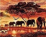 Los principiantes adultos y niños de pintura digital de bricolaje pueden pintar numerando. Apto para oficina salón cocina y dormitorio Elefante árbol puesta de sol 40 x 50 cm (sin borde)