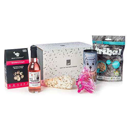 Dog Treat Gift Set - Pawsecco, Popcorn & Healthy Dog Treats Gift Box from Not in the Dog House
