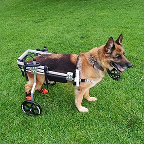 Cochecito para Perros, Carro para Patas Traseras, Silla De Ruedas para Mascotas para Patas Traseras, Reparación Postoperatoria para Gatos Discapacitados Conejos Paralizados Animales Discapacitados